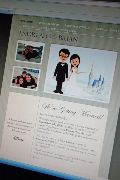 Wedding Site on Projects Leading Up To Our Wedding Including Our Wedding Website